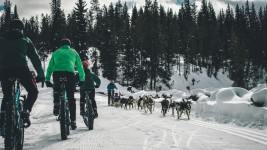 Experience Iditarod on Fat Bike